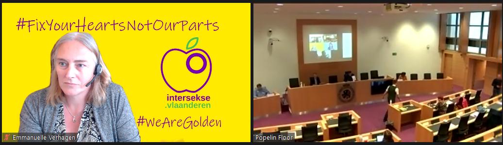 Intersekse Vlaanderen in het Parlement